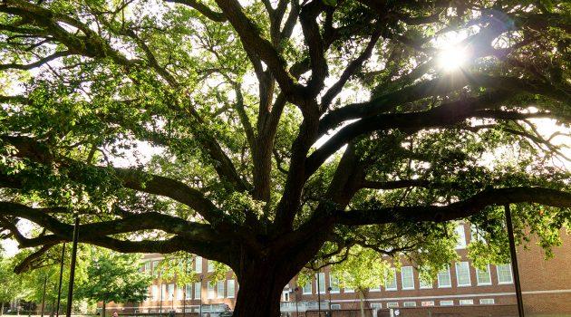 21st Century Campus